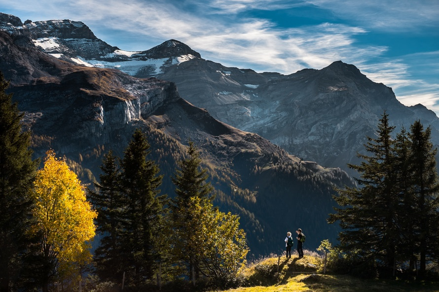 landscape-mountains-nature-trees-large
